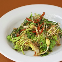 Korean Spring Cabbage Salad, the sign of spring