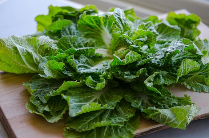 Spring Cabbage, 봄동