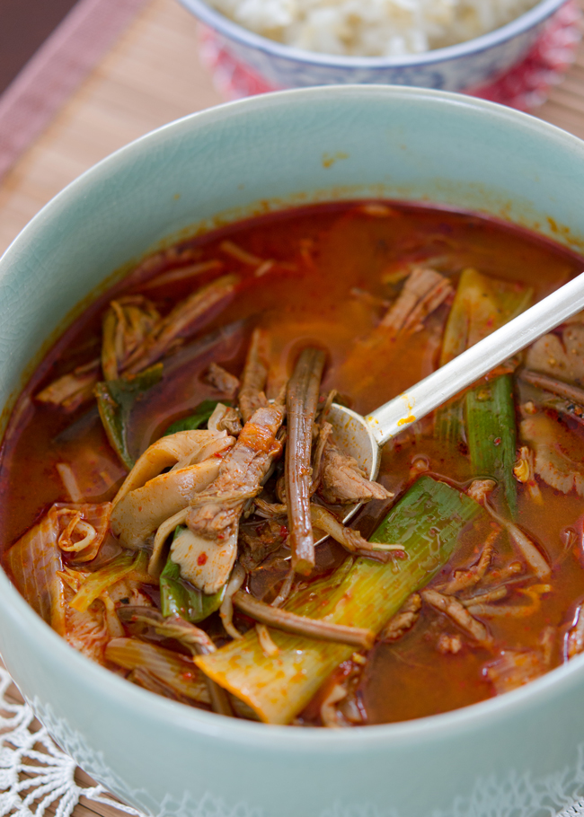 Yukgaejang, Spicy Beef and Vegetable Soup