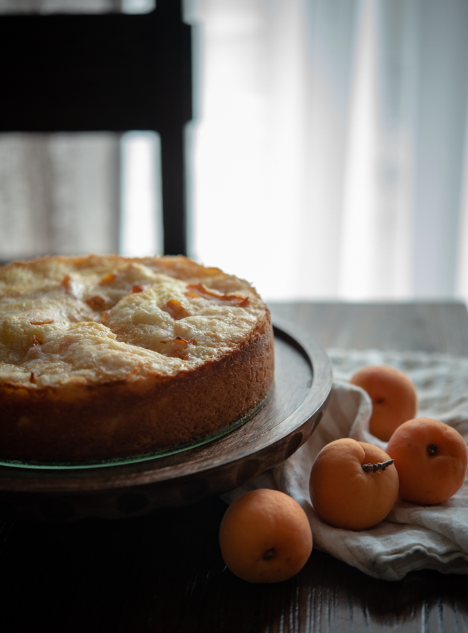 Apricot Kuchen (German Apricot Cake)